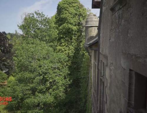 Château Mortagne-sur-Sèvre
