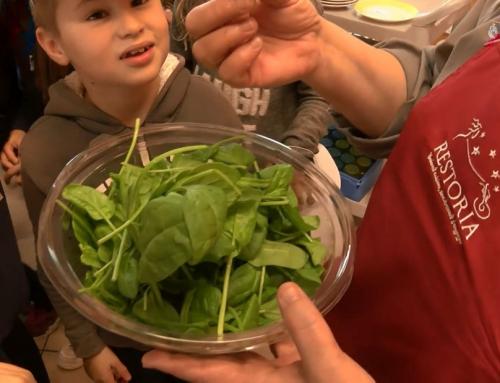 Education : une découverte des fruits et légumes de saison