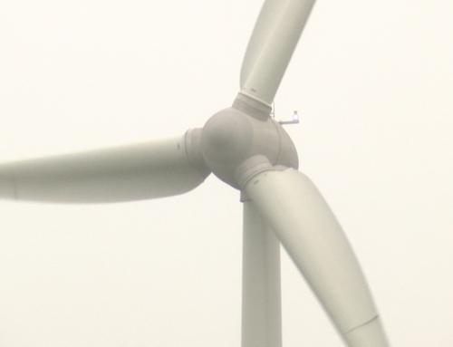 Plus de 50 associations ligériennes demandent un moratoire sur l'éolien