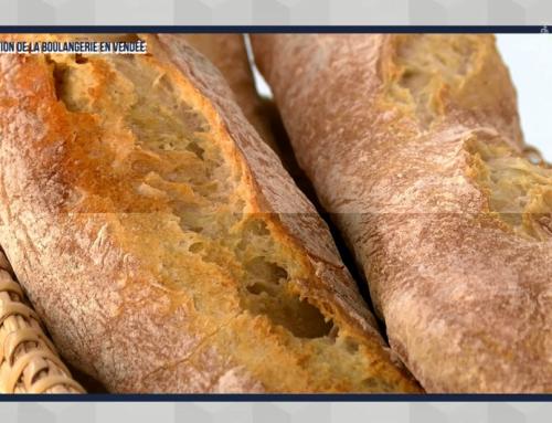 La situation de la boulangerie en Vendée