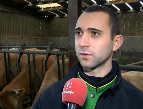 Jordy Bouancheau élu président des Jeunes agriculteurs de Vendée