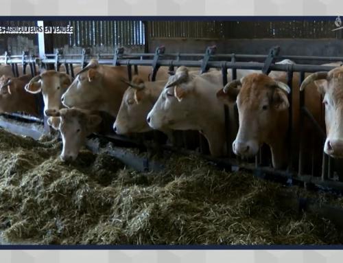 Les Jeunes agriculteurs en Vendée