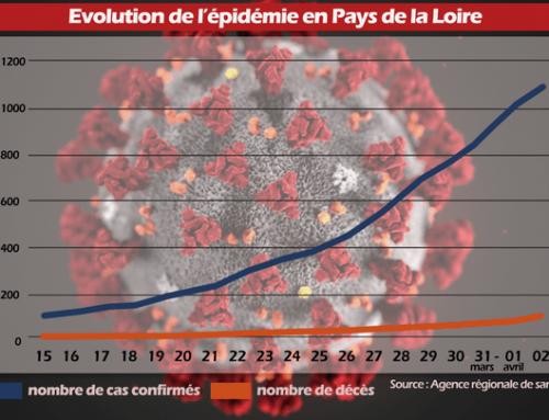 MISE A JOUR 02/04 – Evolution de l'épidémie en Pays de la Loire