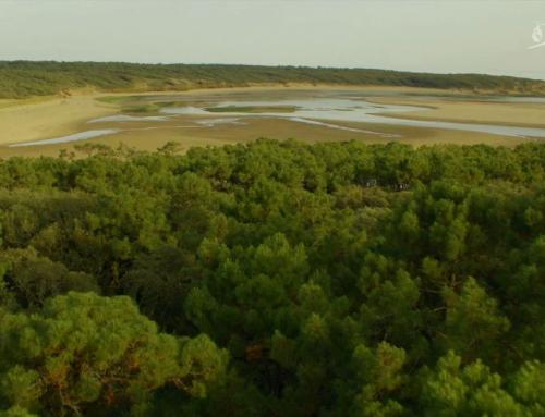 Vendée Expansion – Grands espaces