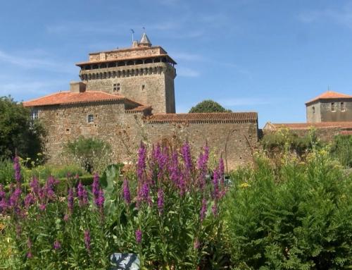 Un jardin d'inspiration médiévale au pied du donjon