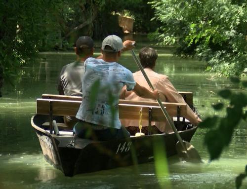Le Marais poitevin, un espace naturel préservé