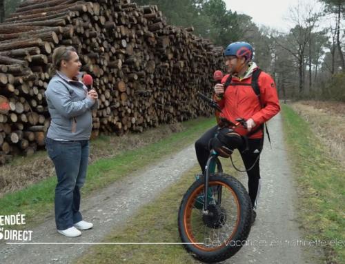 Sillonnez les forêts en trottinette électrique