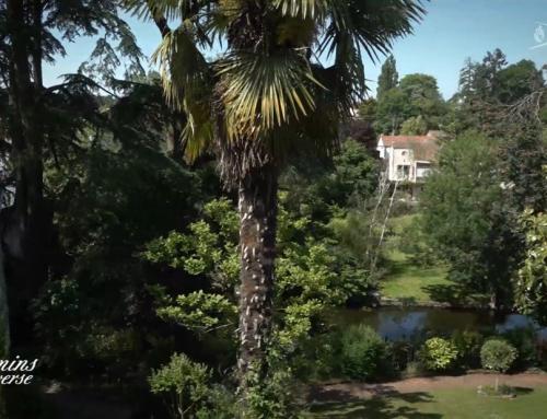 Jardin des cèdres