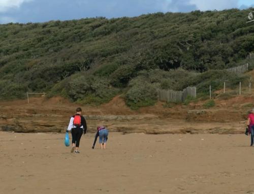 Environnement : la plage du Veillon nettoyée par des volontaires